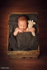 Álbum digital - Marcos y sus fotos de recién nacido. Sin duda el rey de la casa. Carlos Funes Fotografía Granada